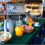 Desayuno cormoranes